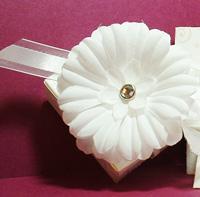 Bride's-Box