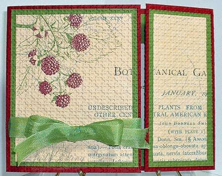 Botanical-Sympathy2